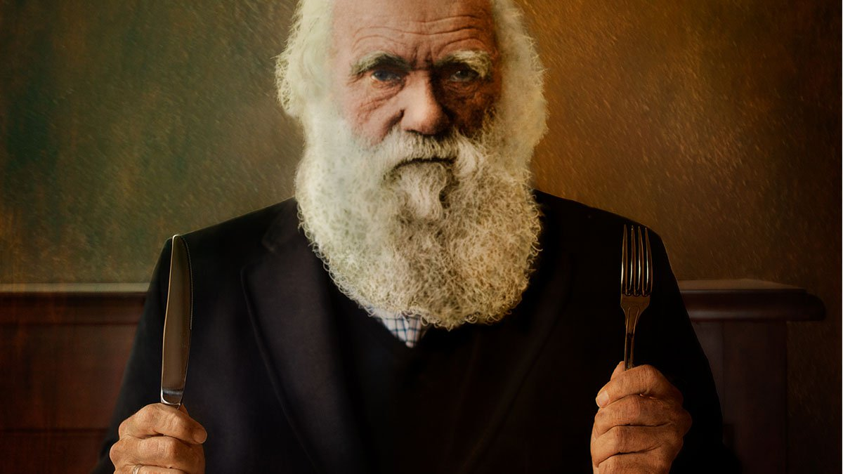 '.DARWIN SE SIENTA A LA MESA .'