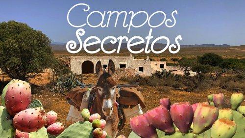 CAMPOS SECRETOS
