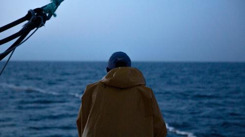 A SEA NEIGHBORHOOD