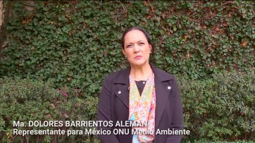 DOLORES BARRIENTOS ALEMÁN (Directora ONU Medio Ambiente México)