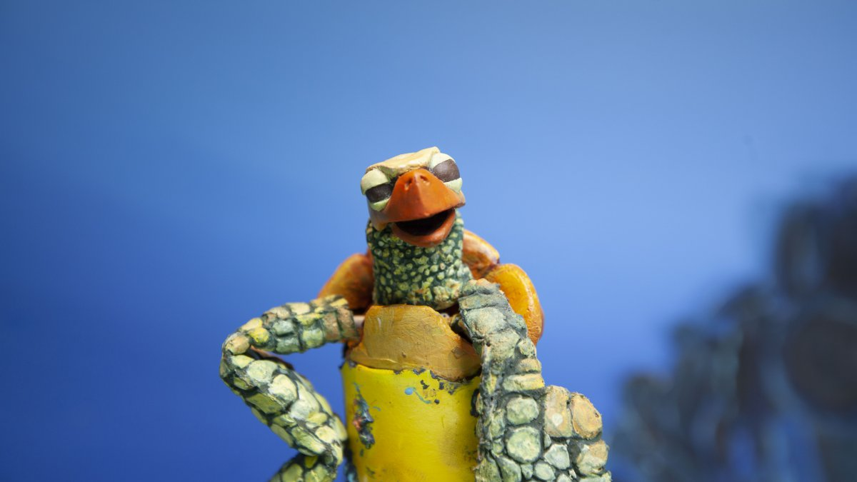 '.The Plastic Turtle.'