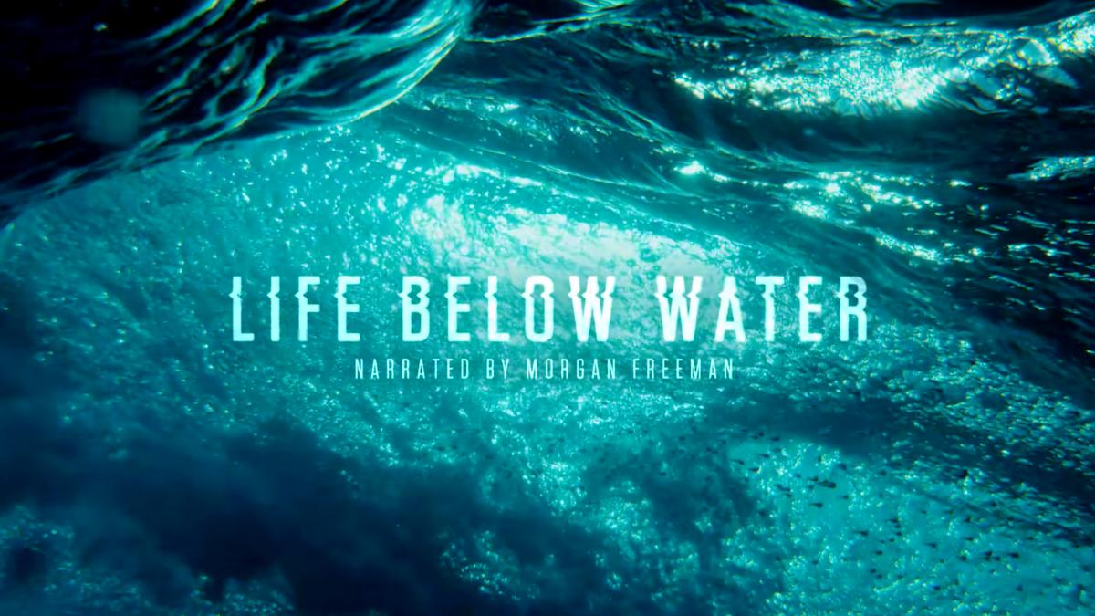 '.Life Below Water.'