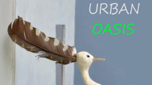 Urban Oasis