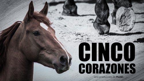 CINCO CORAZONES