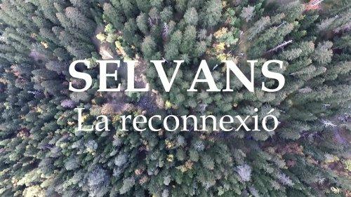 SÈLVANS. LA RECONNEXIÓ (Versión catalán)