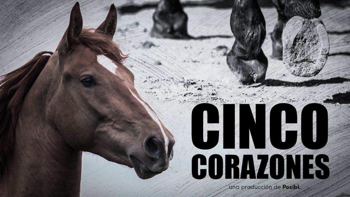 '.CINCO CORAZONES.'